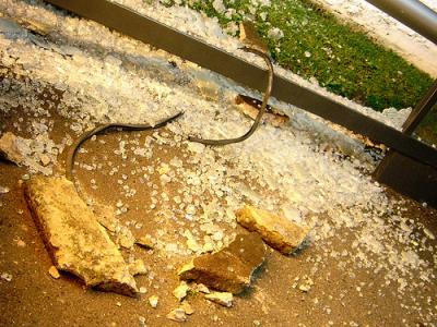 20081023013326-vandalismo-2.jpg