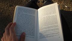 20081212181049-literatura.jpg