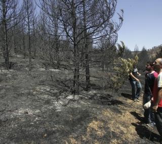 20090727123856-incendio-de-aliaga.jpg