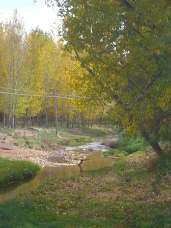 20091103200328-villalba-baja-2.jpg