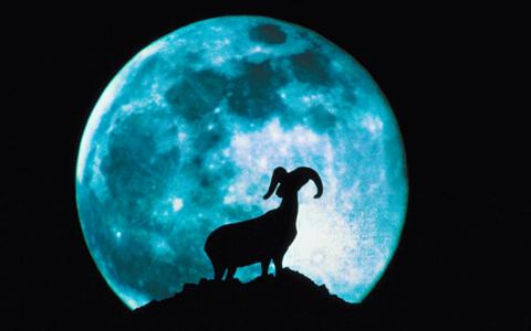 20091231163746-luna-azul.jpg