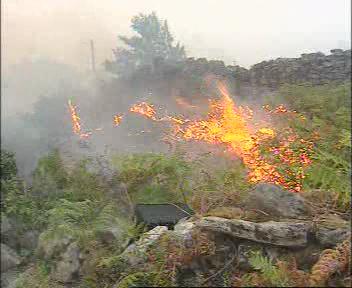 20060805172609-incendios-forestales.jpg