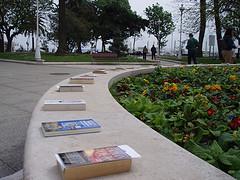 20070326163452-dia-del-libro.jpg