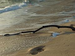 20070717193817-peligro-en-la-playa.jpg