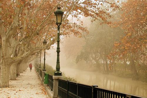 20101223211126-niebla-en-zaragoza.jpg